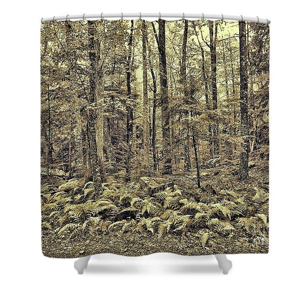 Sepia Landscape Shower Curtain