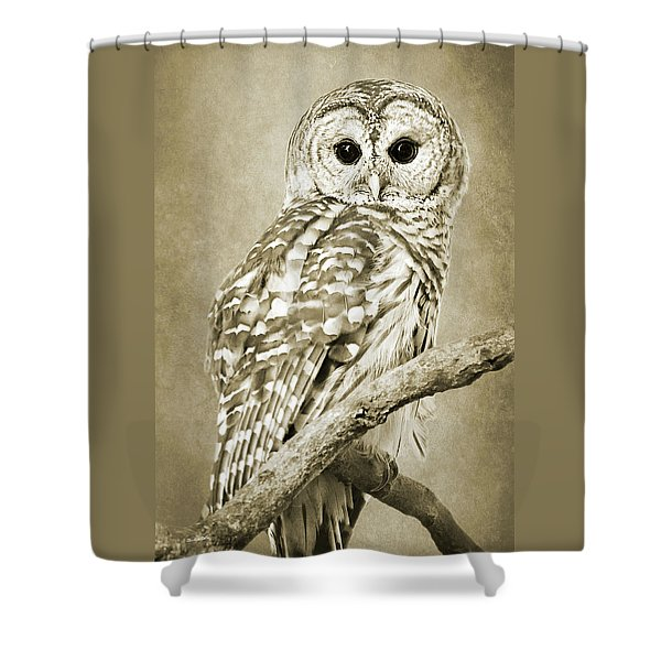 Sepia Owl Shower Curtain