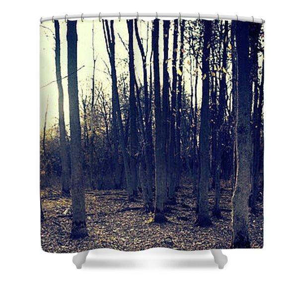 Series Silent Woods 1 Shower Curtain