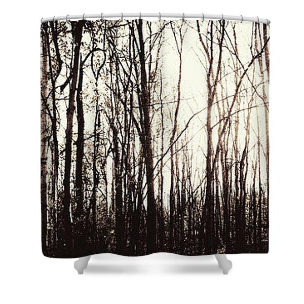 Series Silent Woods 3 Shower Curtain