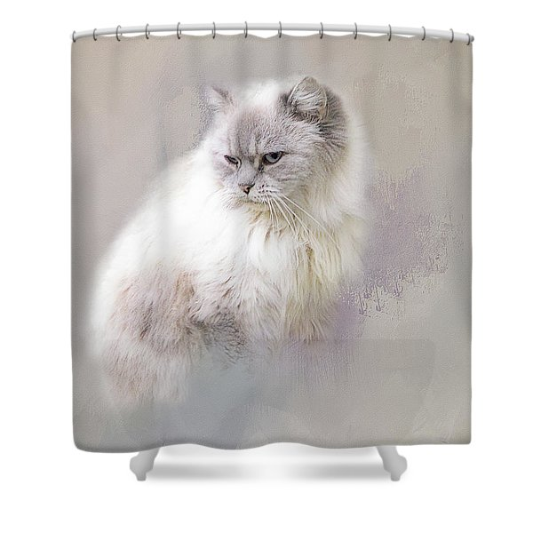 Seriously? Shower Curtain