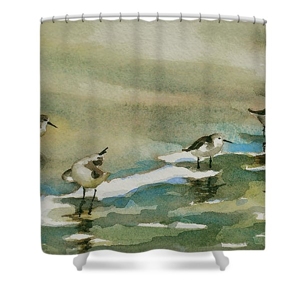 Seven Sandpipers At The Seashore  Shower Curtain