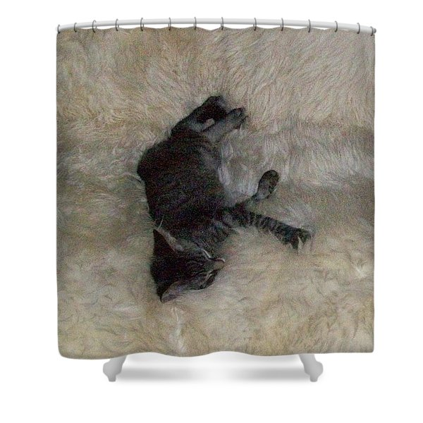 Seventh Heaven Shower Curtain