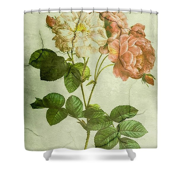 Shabby Chic Pink And White Peonies Shower Curtain