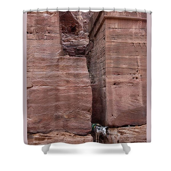 Shower Curtain featuring the photograph Shade Is Good by Mae Wertz