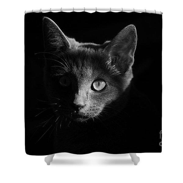 Shadow Cat Shower Curtain