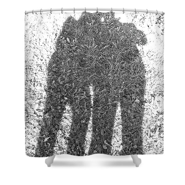 Shadow In The Meadow Bw Shower Curtain
