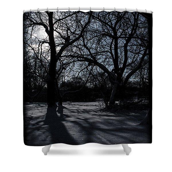 Shadows In January Snow Shower Curtain