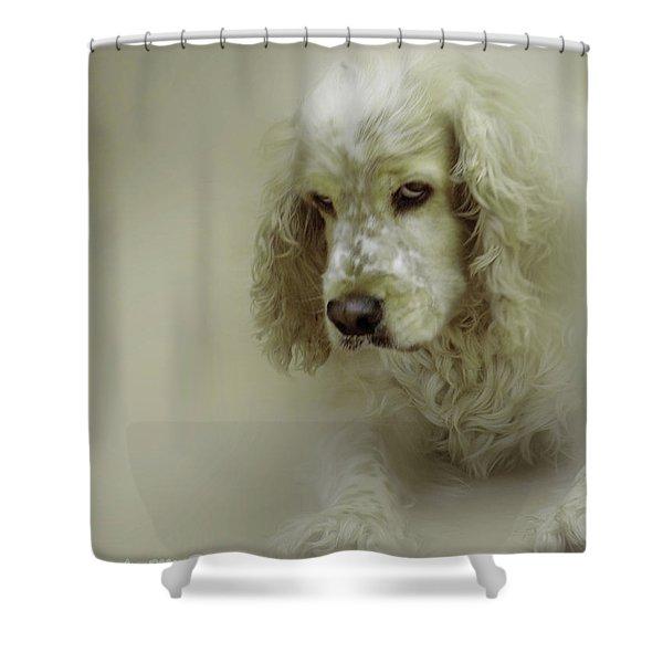Saint Shaggy Art 7 Shower Curtain