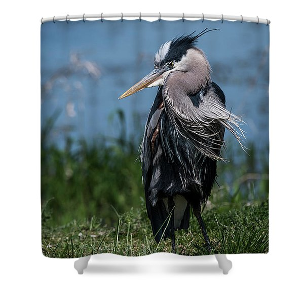 Shaggy Mane Shower Curtain