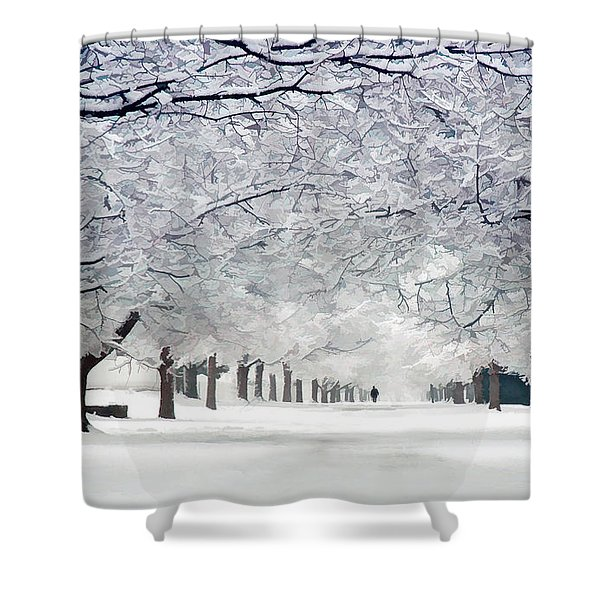 Shaker Winter Walkway Shower Curtain