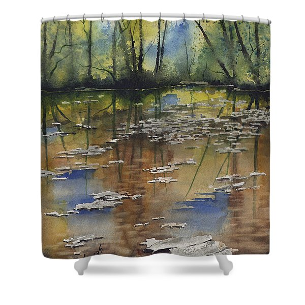 Shallow Water Shower Curtain