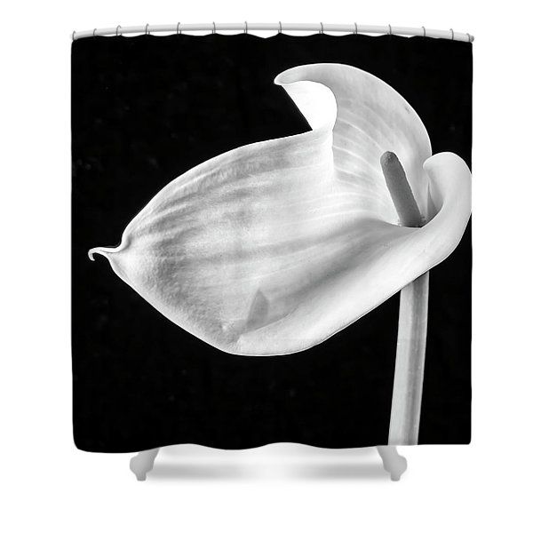Shapely Calla Lily Black And White Shower Curtain