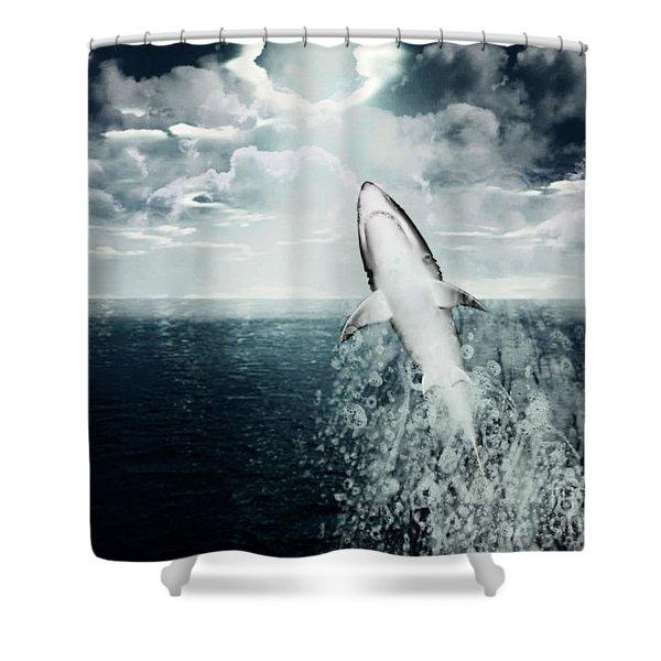Shark Watch Shower Curtain