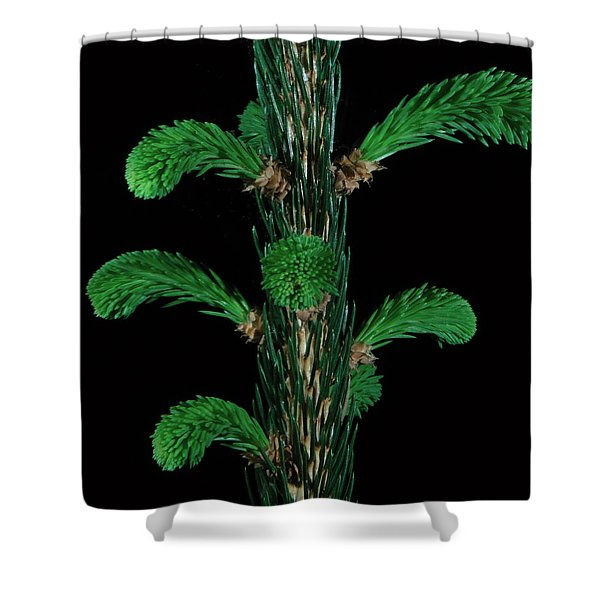 Sharp And Soft Shower Curtain