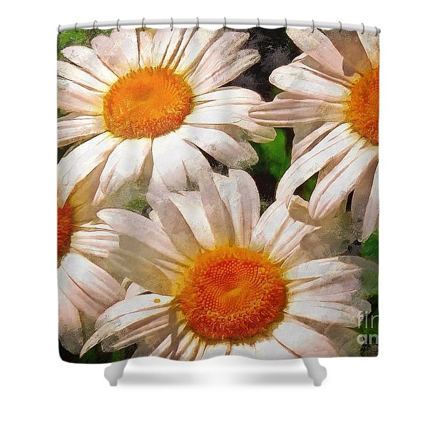 Shasta Daisies 2015 Shower Curtain