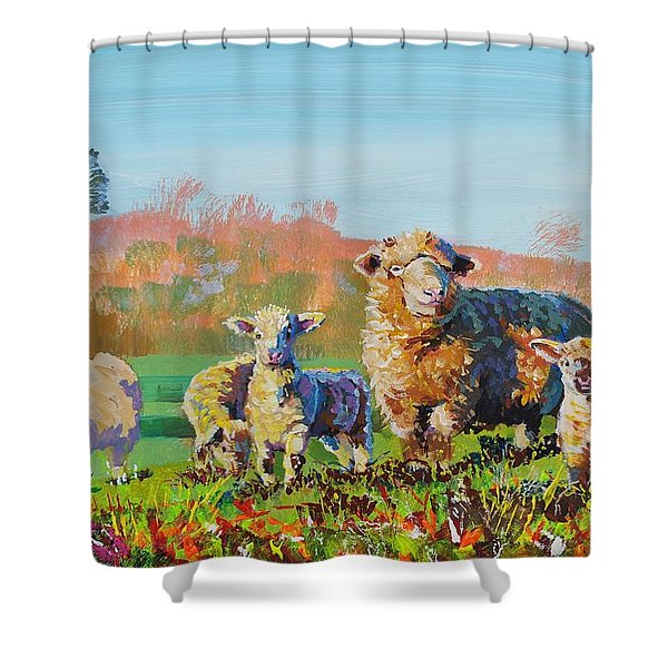Sheep And Lambs In Devon Landscape Bright Colors Shower Curtain
