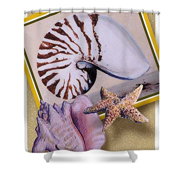 Shell Collage Shower Curtain