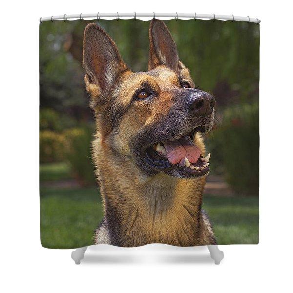 Shella  Shower Curtain