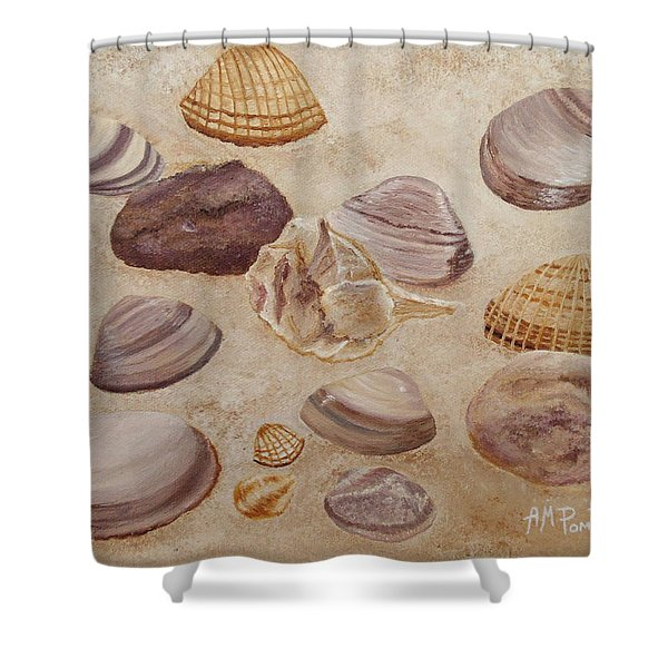 Shells And Stones Shower Curtain