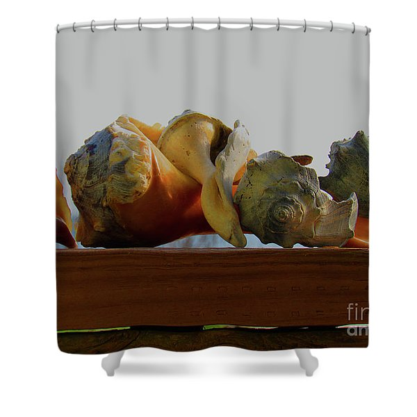 Shells Of The Sea In Orange And Gray Shower Curtain