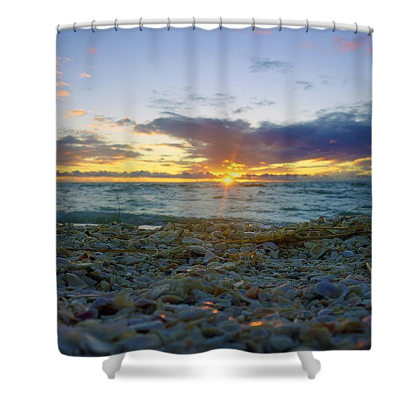 Shells On The Beach At Sunset Shower Curtain
