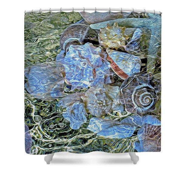 Shells Underwater 20 Shower Curtain