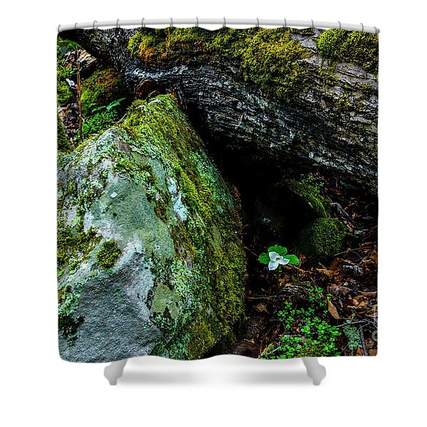 Sheltered By The Rock Shower Curtain