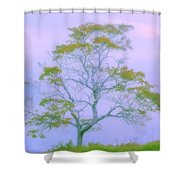 Shepherd Of The Valley Shower Curtain