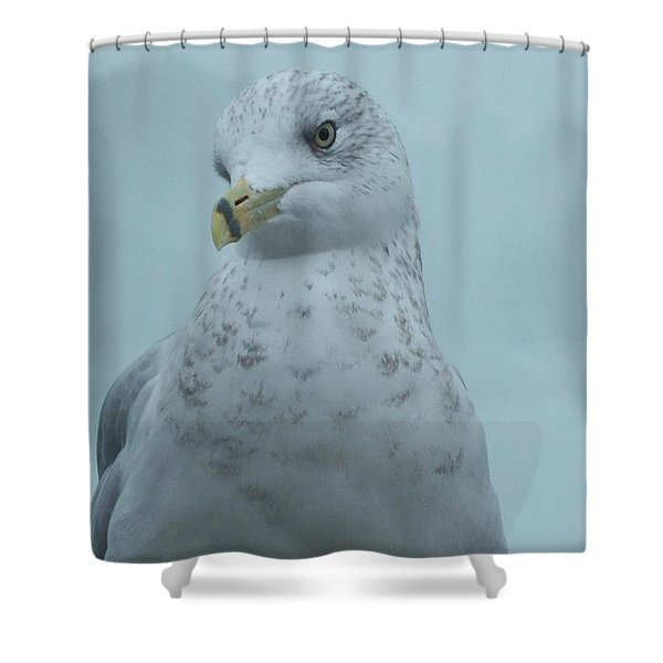 She's Over There Shower Curtain