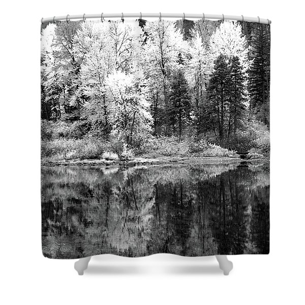 Shining Trees Shower Curtain
