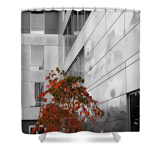 Shower Curtain featuring the photograph Shoreline City Hall by Mary Jo Allen