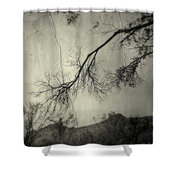 Show Me  Shower Curtain