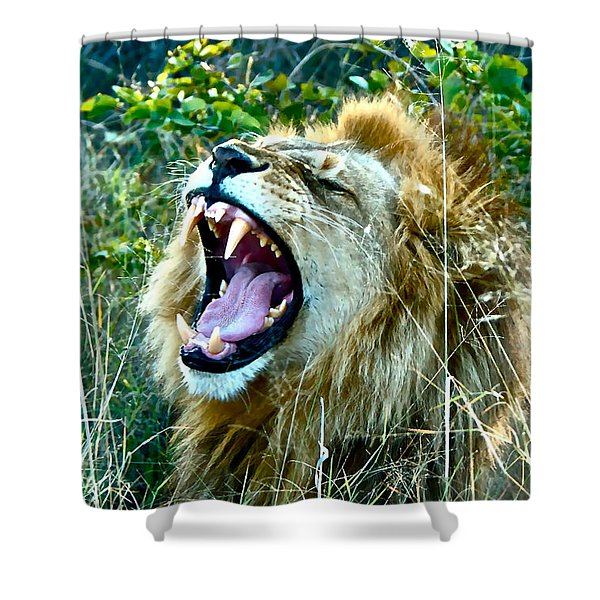 Show Me Your Teeth Shower Curtain