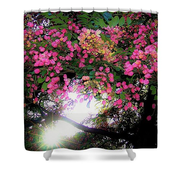 Shower Tree Flowers And Hawaii Sunset Shower Curtain