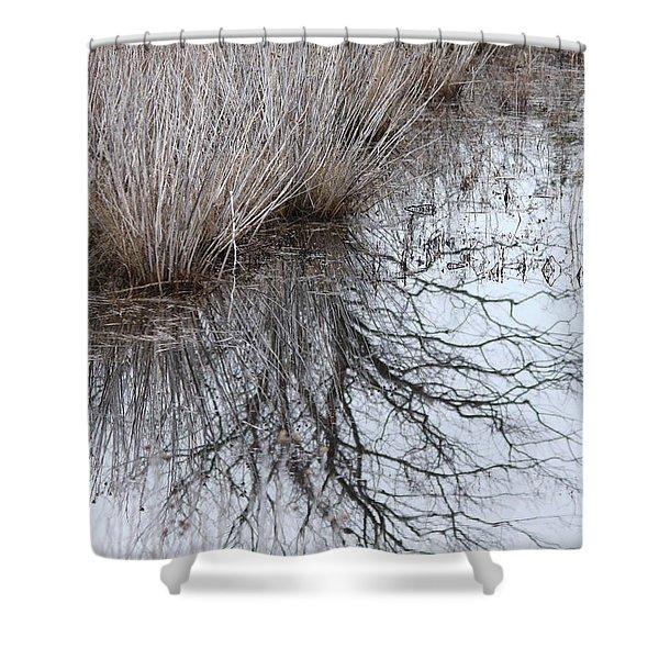 Shurbs In Winter Marsh Shower Curtain