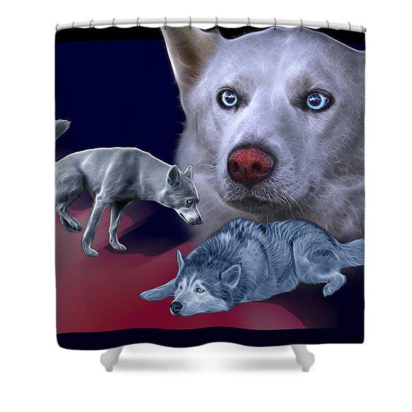 Siberian Husky - Modern Dog Art - 0002 Shower Curtain
