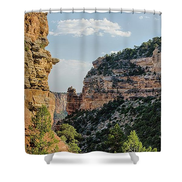 Side Canyon View Shower Curtain