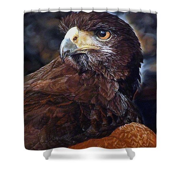 Sig The Harris Hawk Shower Curtain