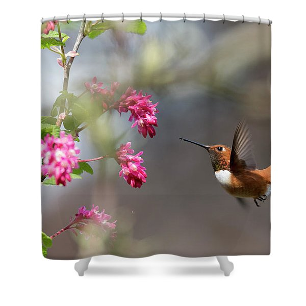 Sign Of Spring 3 Shower Curtain