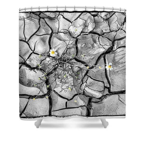 Signs Of Life Shower Curtain