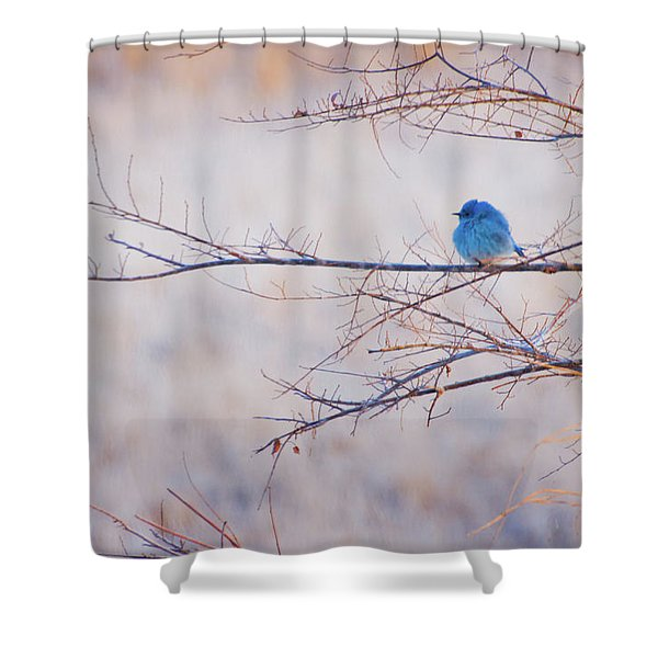Shower Curtain featuring the photograph Signs Of Spring by John De Bord