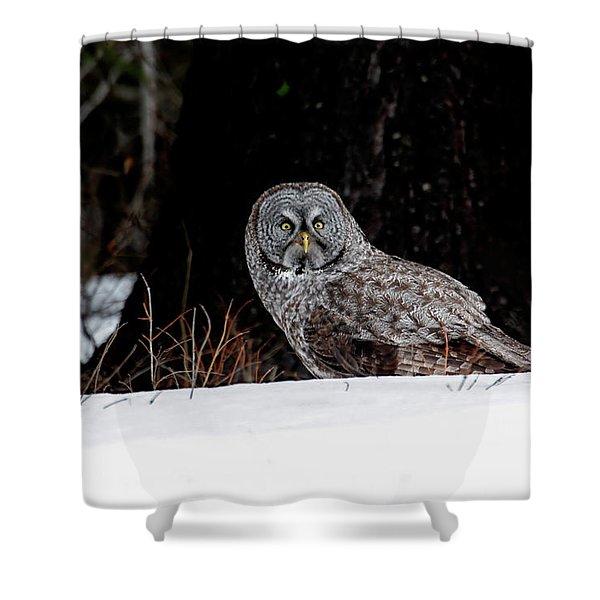Silent Hunter Shower Curtain