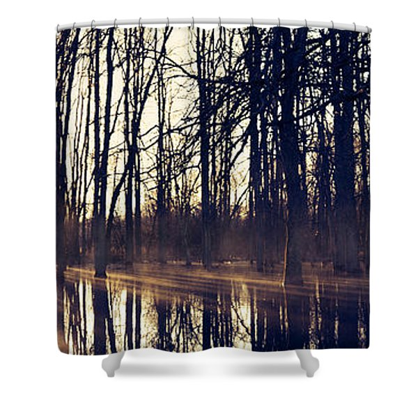 Silent Woods No 4 Shower Curtain