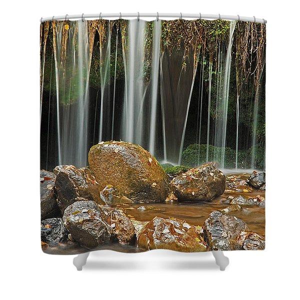 Silky Falls Shower Curtain
