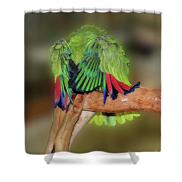 Silly Amazon Parrot Shower Curtain