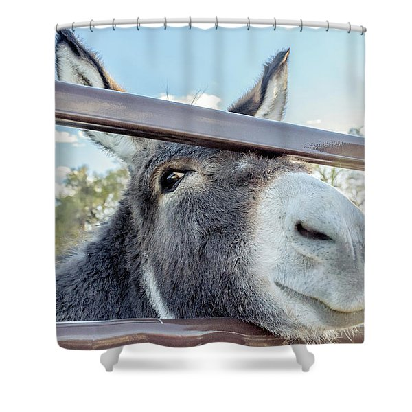 Silly Grin Shower Curtain