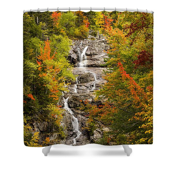 Silver Cascade Shower Curtain