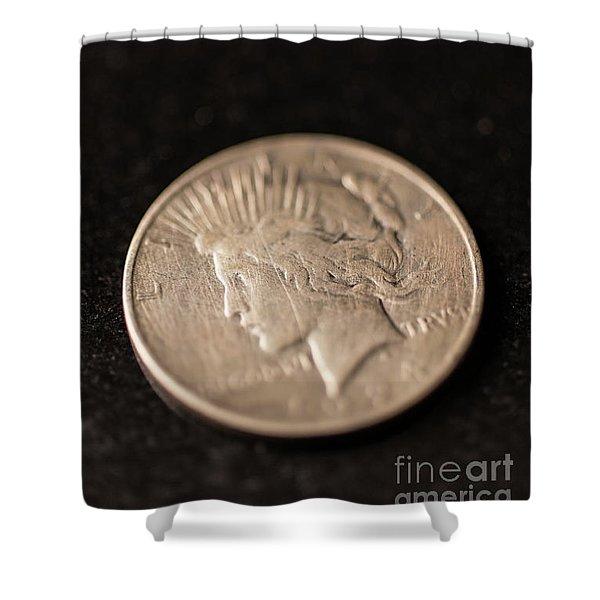 Silver Dollar Shower Curtain