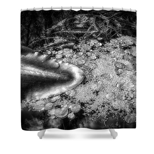 Silver Drops Shower Curtain